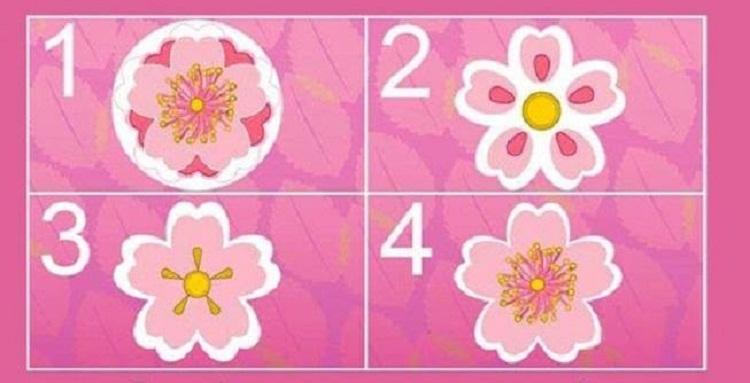 Թեստ. Ընտրեք ծաղիկը, իսկ մենք կբացահայտենք, թե ինչպես եք ձեզ դրսևորում սիրային հարաբերություններում