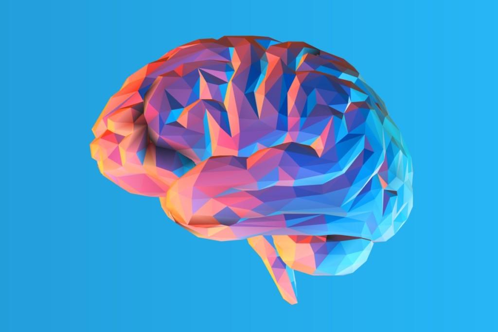 Նյարդաբանը այն մասին, թե խելացի մարդիկ ինչպես պետք է ապրեն։Ուղեղը չի սիրում ճարպ, ծխախոտ, ալկոհոլ, բայց նրան դուր է գալիս…