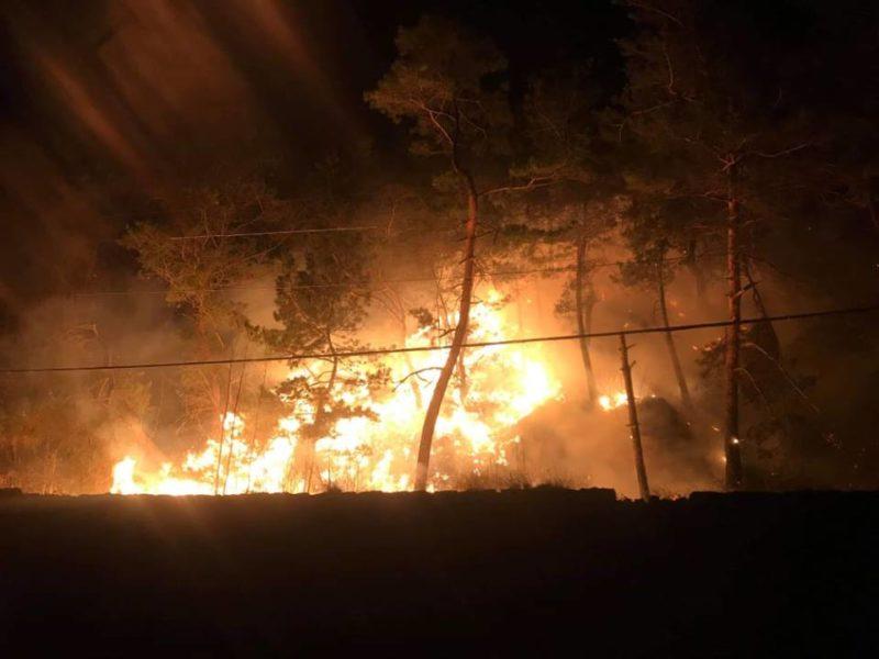 Լոռու մարզում բռնկվել է խոշոր անտառային հրդեհ