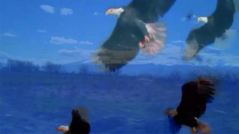 Մեր արծիվ տղաները՝ Արմենակը, Ռոբերտը, Անդրանիկը և Քյարամը,երկնքից հսկում են մեզ. Հուշակոթողի բացման ժամանակ երկնքում նկատվել է չորս արծիվ.