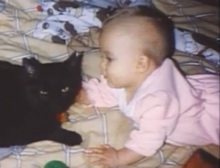 Մինչ այսօր ծնողները չեն դադարում շնորհակալ լինել իրենց կատվին. Իսկ եթե նա մեկ վայրկյան ուշանար…