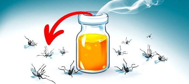 Մոծակներին հեռու պահող բնական միջոցներ