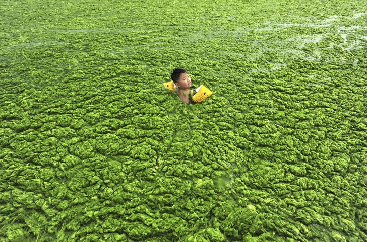 Սարսափեցնող նկարներ, որոնք ցույց  են տալիս, թե ինչքան  հեռուն ենք մենք գնացել  երկրագնդի աղտոտման  հարցում