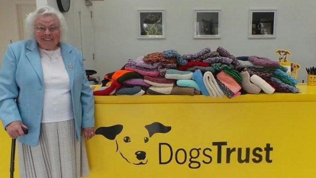 89-ամյա  ծեր կինը գործեց 450 վերմակներ և շների հագուստներ շների ապաստարանի համար