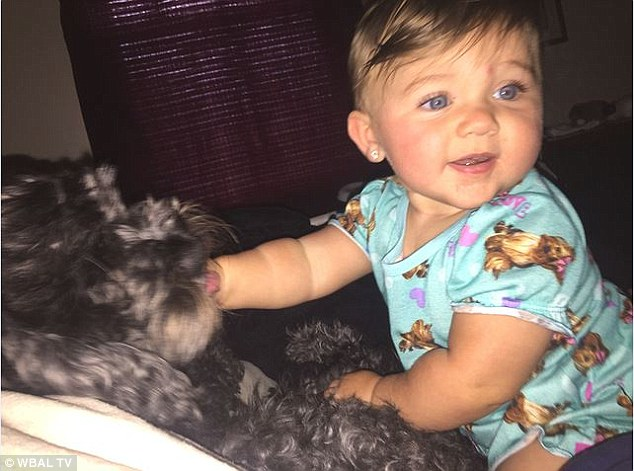 8 ամսական Վիվիենը քնած էր ննջարանում, երբ սարսափելի հրդեհ բռնկվեց, փոքրիկ, բայց հավատարիմ շունը վազեց երեխայի մոտ