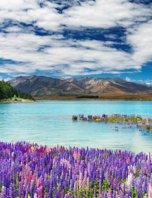 Վայրեր երկրագնդի վրա.  նրանք կհիացնեն ձեզ իրենց գեղեցկությամբ,  ո՞րը հավանեցիք