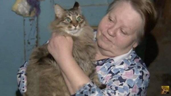 Կատուն փրկել է երեխայի, ում թողել էին նկուղում՝  արկղի մեջ