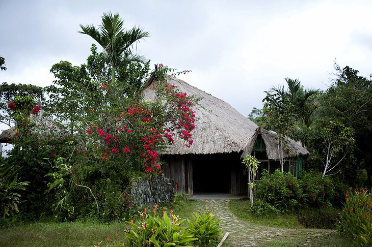 ՛՛Բնական Գյուղեր՛՛ կոչվող հանգստավայրը Ֆիլիպինների բնության մեջ