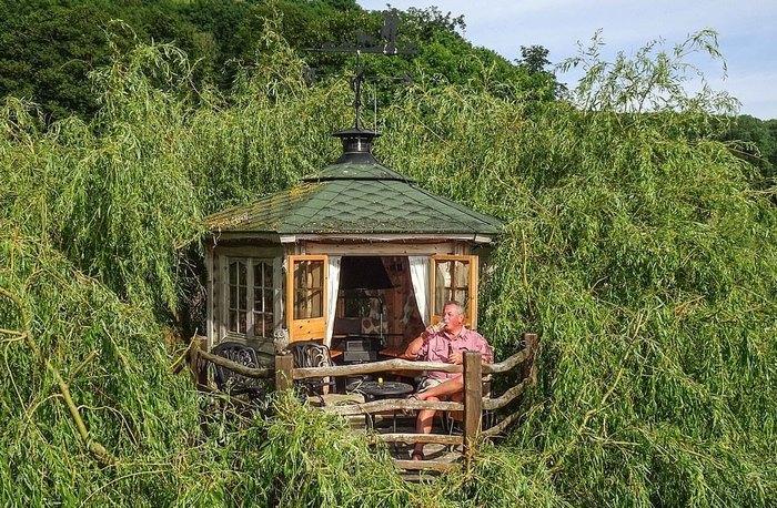 Տղամարդը տնակ կառուցեց ծառի վրա, այժմ նրա պատշգամբից հիանալի տեսարան է բացվում