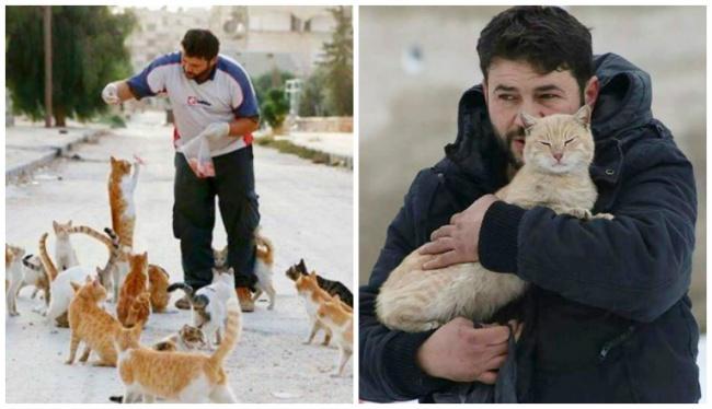 Սիրիացին փրկում է կատուներին և ապաստան տալիս նրանց