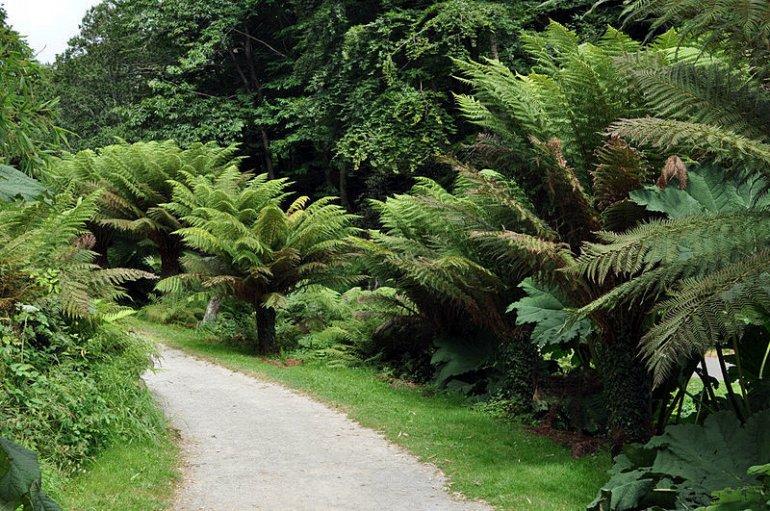 Ֆրանսիայի Բրեստ քաղաքի Բուսաբանական ազգային կոնսերվատորիան
