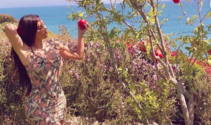 Քիմ Քարդաշյանը նռան ծառի ֆոնին․ լուսանկար